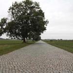 Kopfsteinpflaster-Radweg