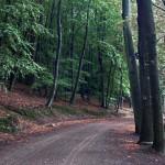 Abfahrt von der hoechsten Erhebung Usedoms