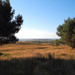 Hiddensee, Blick vom Huegel