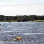 Elbe-Saale Mündung