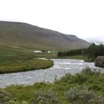das Aufforstungsprogramm verändert die Landschaft