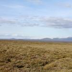 Hochland mit Sicht auf den Gletscher Langjökull