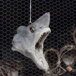 Verkauf von Fischdekoration