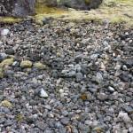 Steine am Strand von Laukvika
