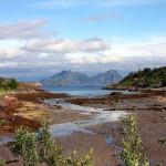 schöne Bucht auf den Lofoten