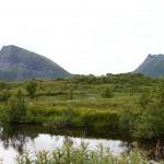 Naturschutzgebiet und Vogelparadies