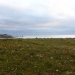 am Strand von Flakstad