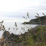 Bucht bei Reine