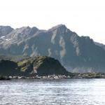 der Hafen von Stamsund