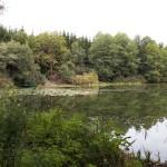 Teich vor Flessenow mit Boot