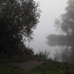 Werra im Nebel