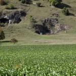 Rennertshofen - Mauerner Höhlen  im Wellheimer Trockental (Urdonautal)