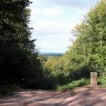 Eisenach, Blick vom Weg Sängerwiesen