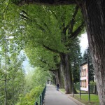 Merano, Promenade