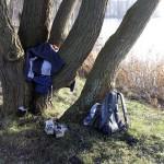 der Baum als Kleiderhaken