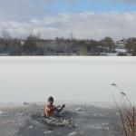 Eiskalt 2017