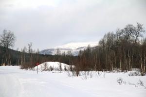 Winter Schweden95 Kopie