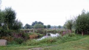 Altentreptow, an den Fischteichen