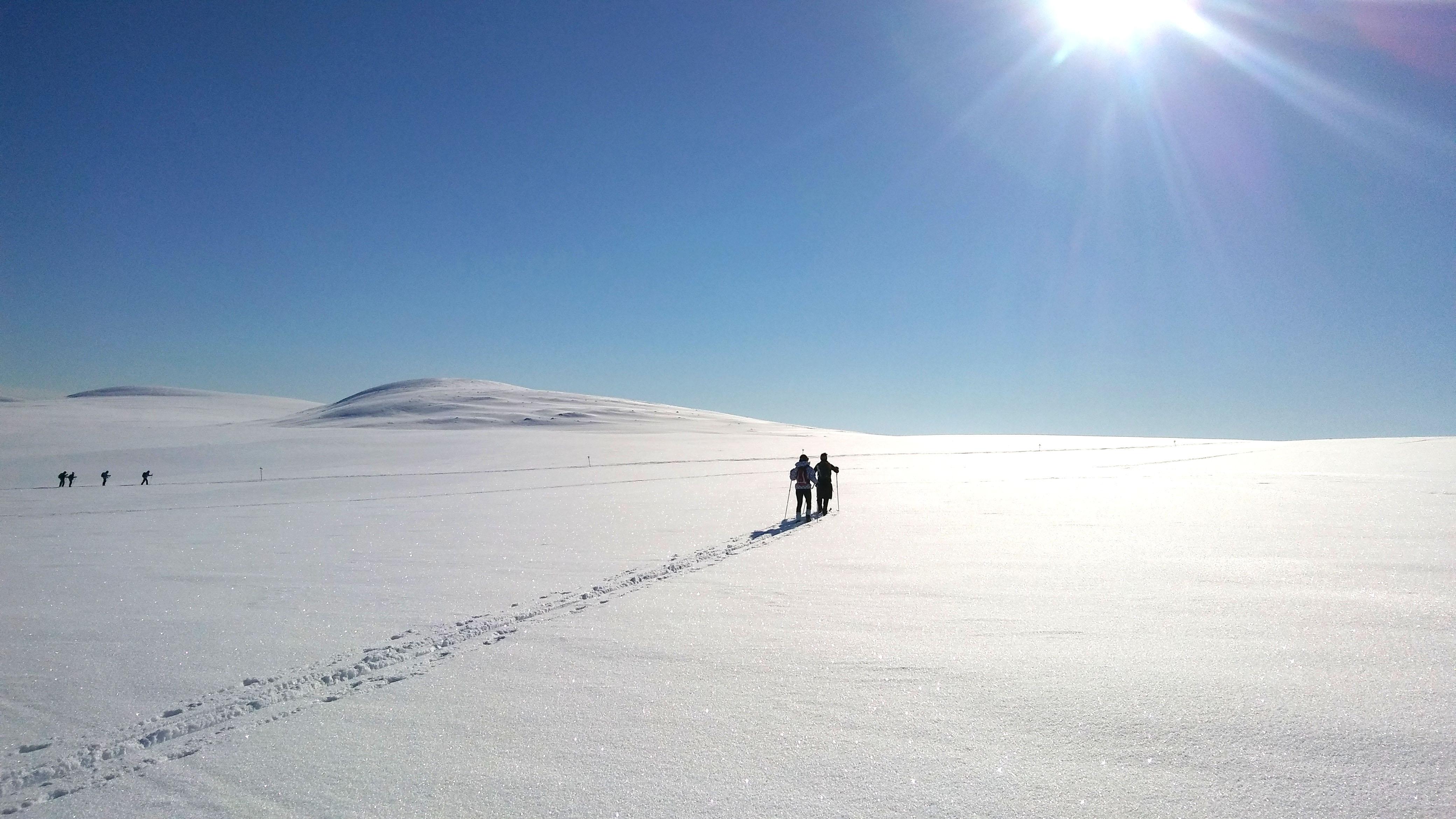 Back Country Skitour Grövelsjön