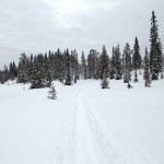 Skitour Nippfjell