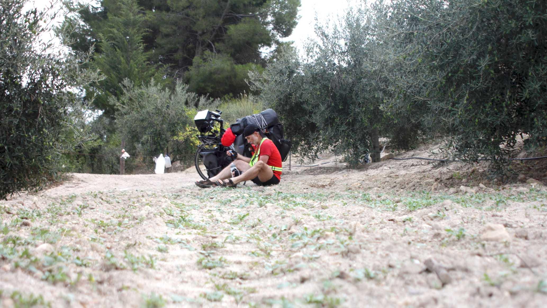 Pause im Olivenhain